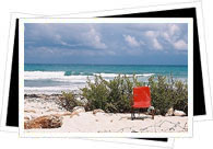 Beaches in Playa del Carmen